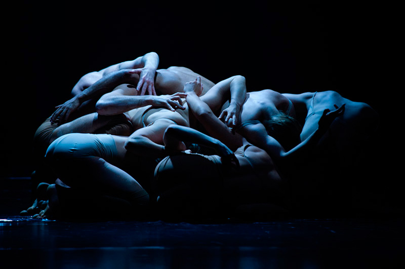 Iceland Dance Company: Black Marrow